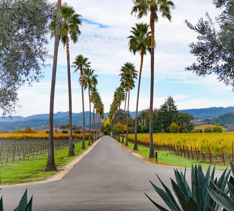 Round Pond Estate Napa Valley California