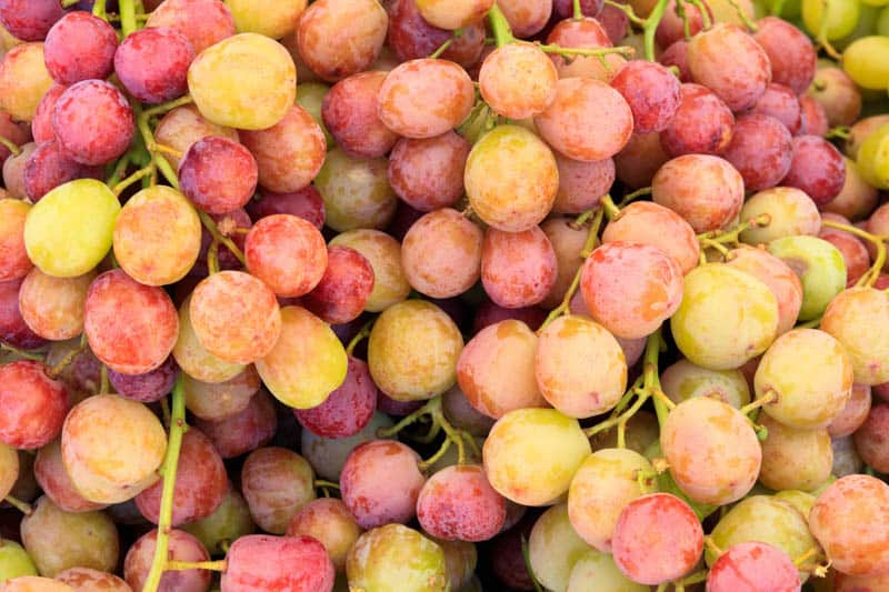Sweet grapes at the Farmers' Market in Solvang