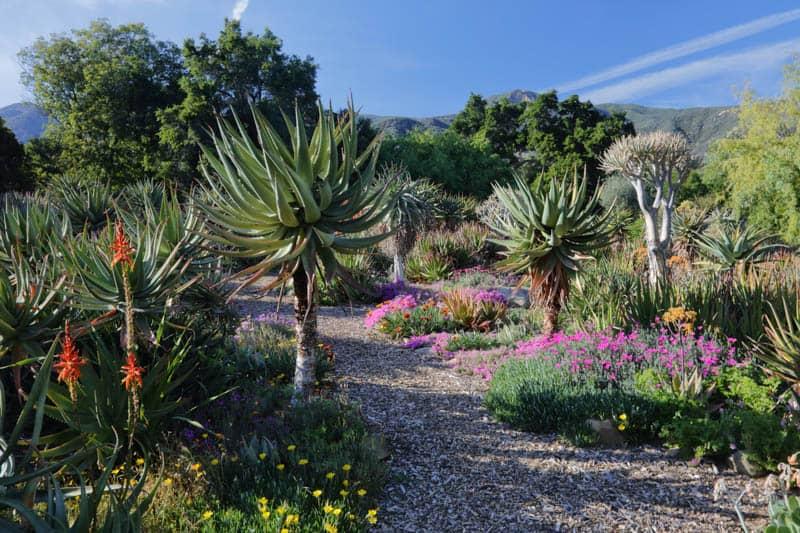 Taft Botanical Garden Ojai California