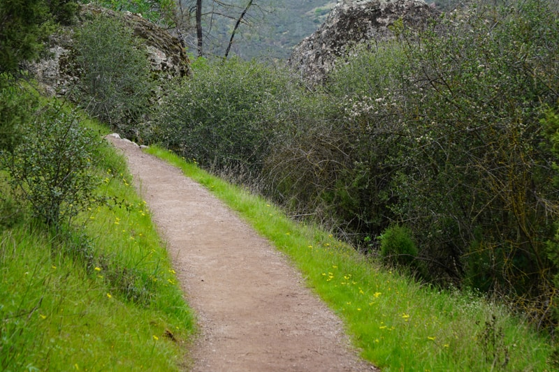 Trail at Pinnacles in California