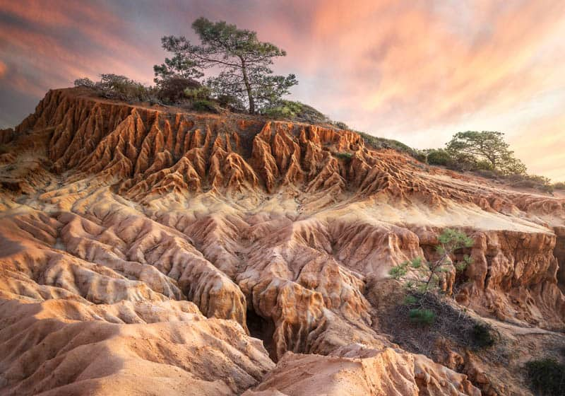 Landscape at Torrey Pines State Reserve California