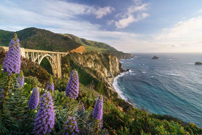 Big Sur California in Spring