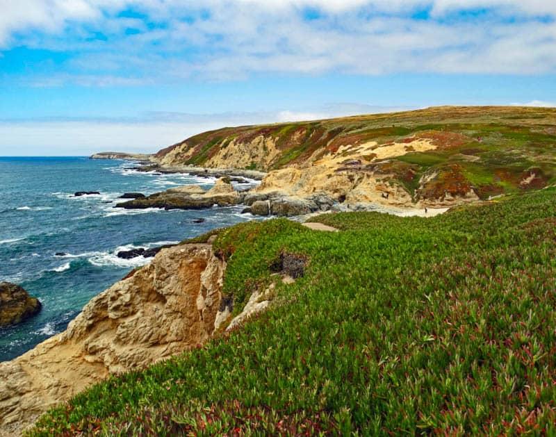 Bodega Bay in California