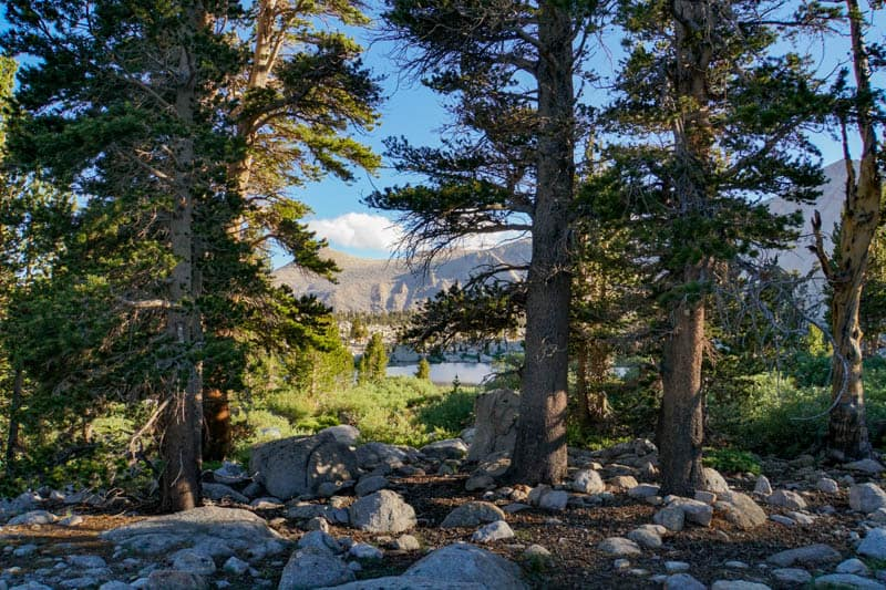 Cottonwood Lakes Trail in the Eastern Sierra of California
