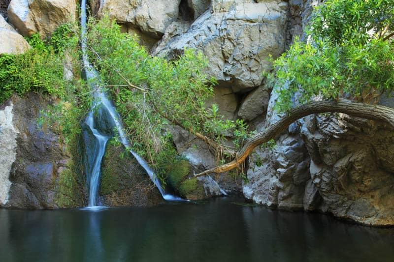 Darwin Falls Death Valley NP California