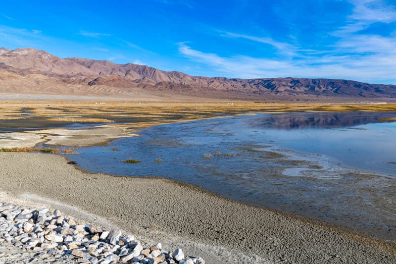 Owens Lake in the Eastern Sierra is a a great spot for birding