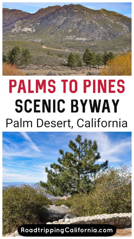 What to expect on the Palms to Pines Highway scenic driving route near Palm Springs in Southern California. Plus tips for doing the drive!