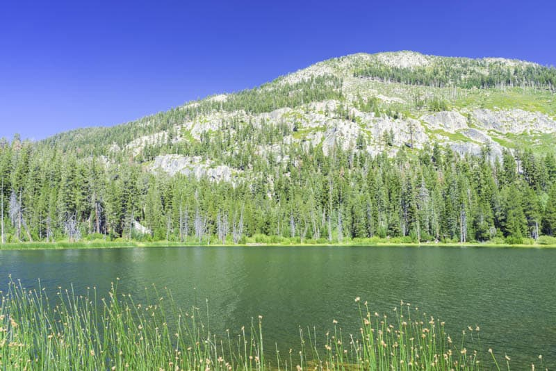 Sotcher Lake near Devils Postpile National Monument California