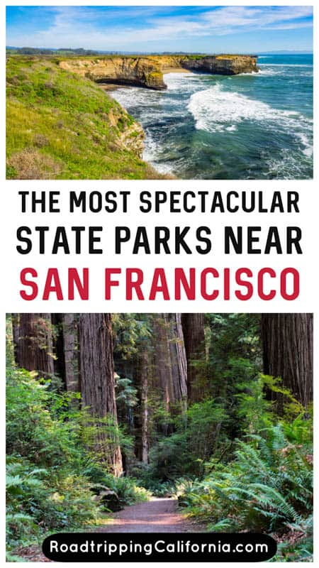 Discover the best California State Parks near San Francisco to visit, from coastal parks to redwood forests and mountain summits.