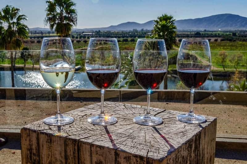 Wine tasting at winery in the Valle de Guadalupe in Baja California