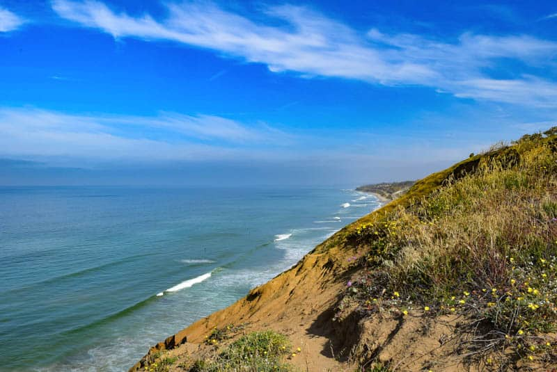 Torrey Pines State Reserve is one of the easiest day trips from San Diego you can do!