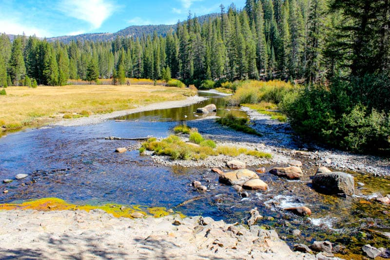 A view of the San Joaquin River at Devils Postpile National Monument in California