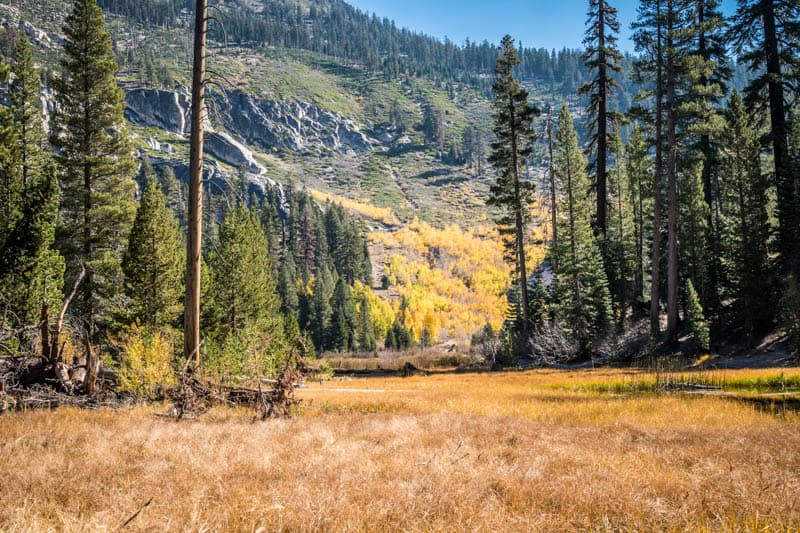 Fall Landscape at Devils Postpile National Monument in California