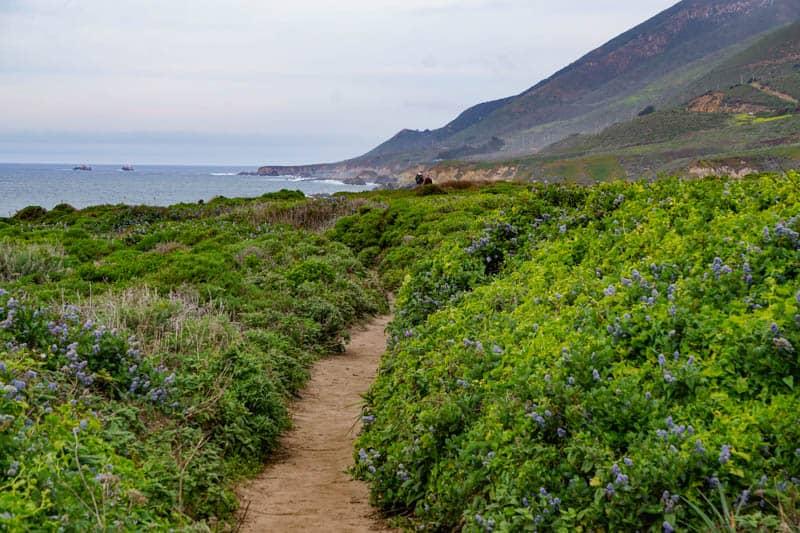 Bluff Trail above Garrapata Beach in Big Sur California