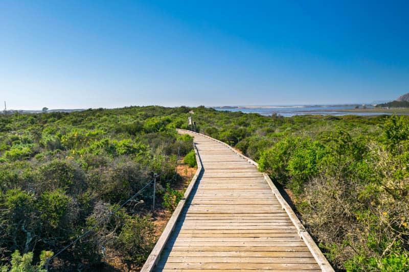 Elfin Forest Boardwalk Los Osos California