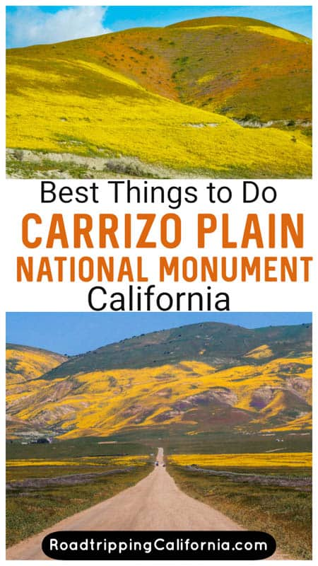 Discover the best things to do in Carrizo Plain National Monument in Central California, plus tips for visiting for wildflower bloom!