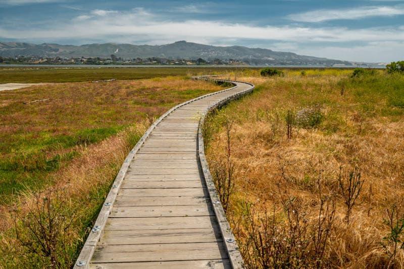 Marina Peninsula Trail Morro Bay California