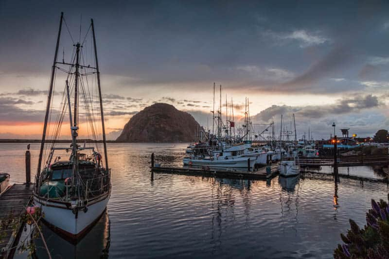 A boat trip is a must in Morro Bay California