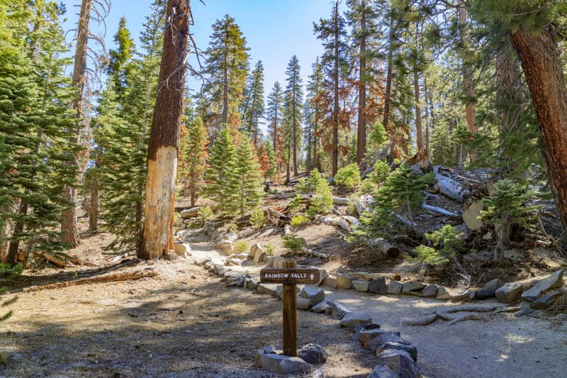 Trail to Rainbow Falls in Devils Postpile National Monument California