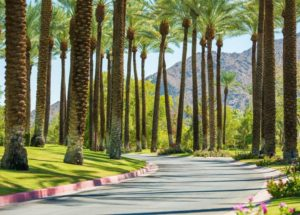 The Best Airbnb Stays in Palm Springs, California (Private Pools, Cozy Cabins, and More!)