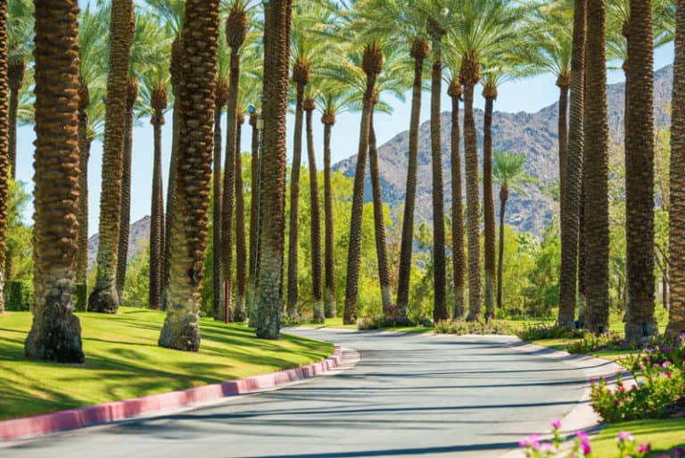 Road in Palm Springs California