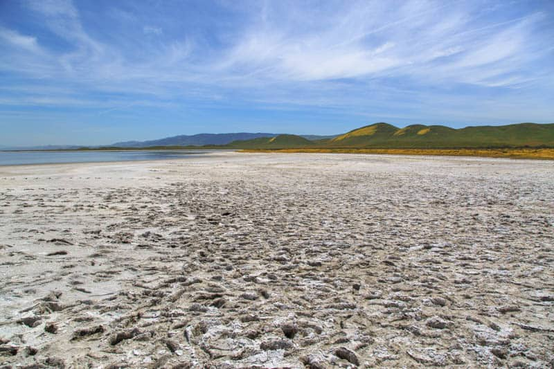 Salt Flats at Soda Lake in Carrizo Plain