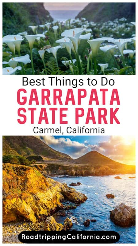 Discover all the fun things to do in Garrapata State Park in Big Sur California, from hiking to photography and wildflower and wildlife viewing.