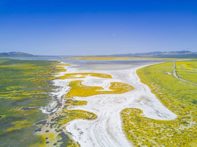 Aerial View of Soda Lake in Carrizo Plain