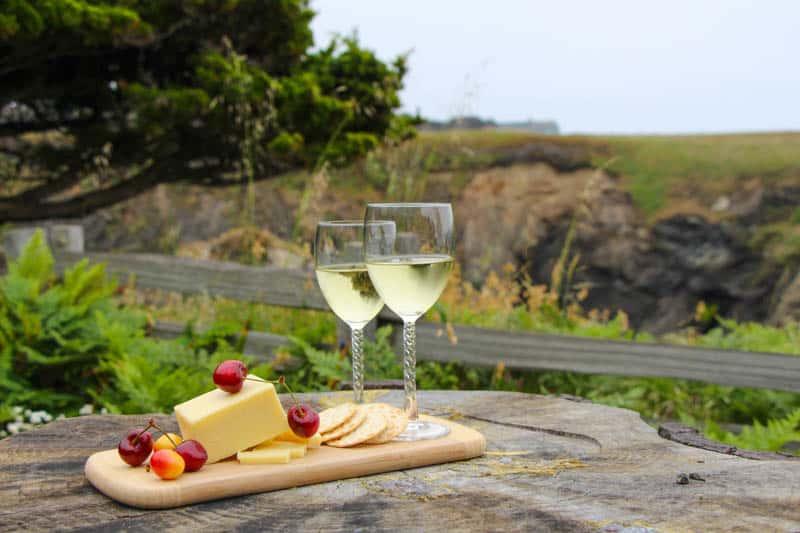 Enjoy wine tasting in Mendocino County California