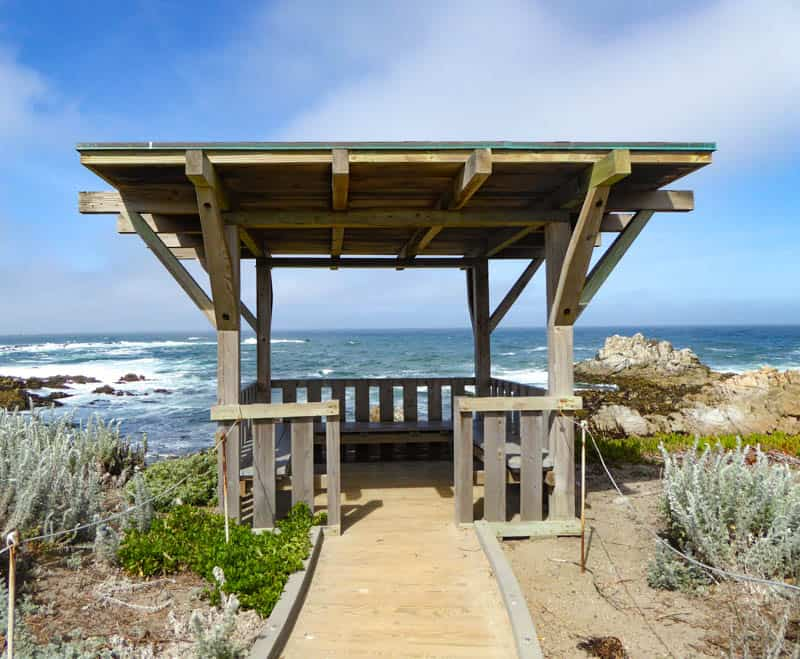 Enjoy the view from the coastal trail at Asilomar in Pacific Grove California