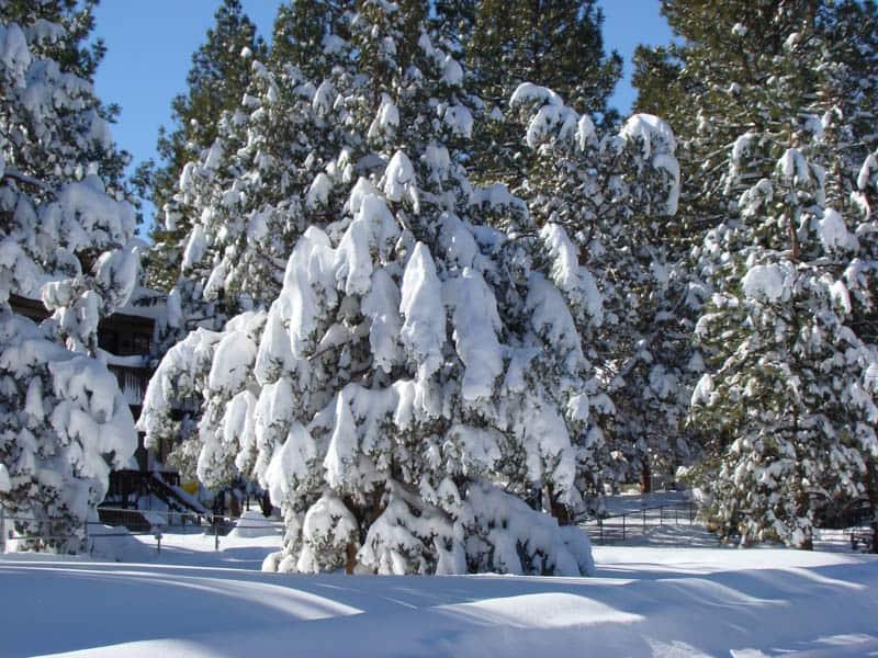 Big Bear Lake in Bernadino National Forest in winter
