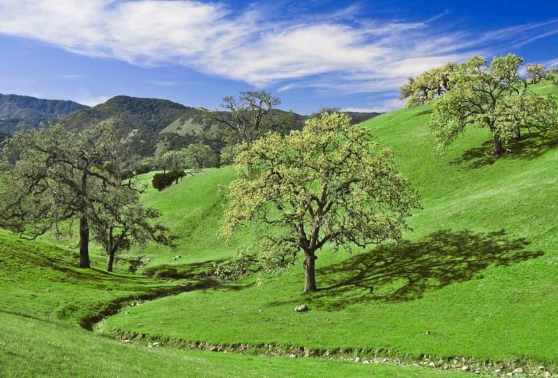 Santa Ynez Valley on the Central California Coast
