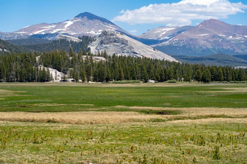 Tuolumne Meadows along Tioga Road in Yosemite National Park California