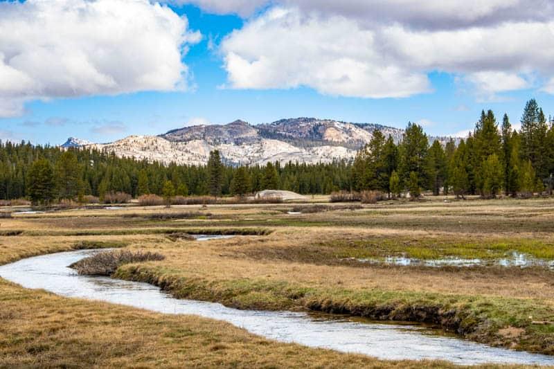 Tuolumne River in Yosemite NP California