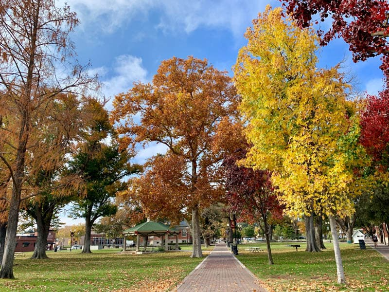 Downtown City Park, Paso Robles, California, in the fall