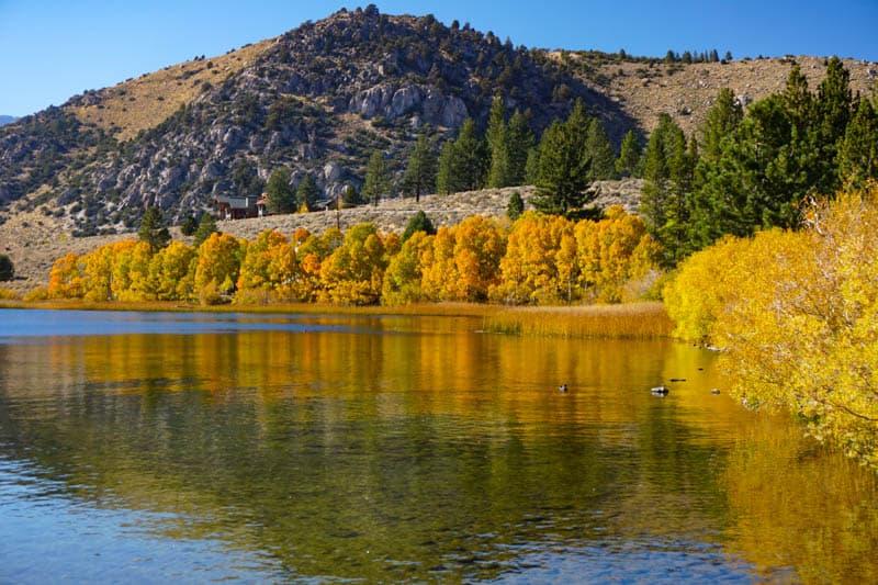 Fall colors at Gull Lake in California