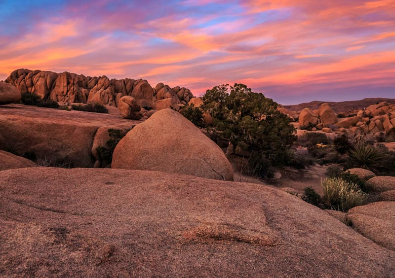 Joshua Tree National Park is one of the places you can visit on an LA to Vegas drive.