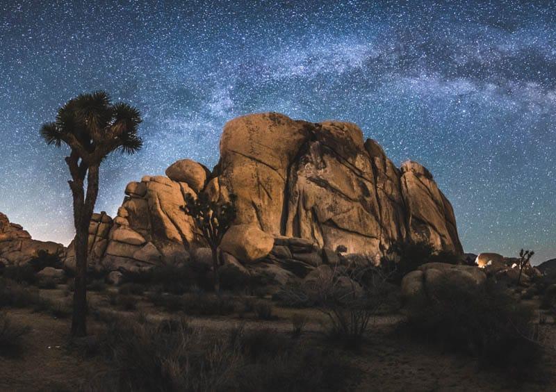 Night sky in Joshua Tree National Park in California