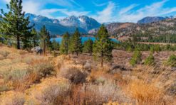 June Lake Loop: A Scenic Drive in the Eastern Sierra!