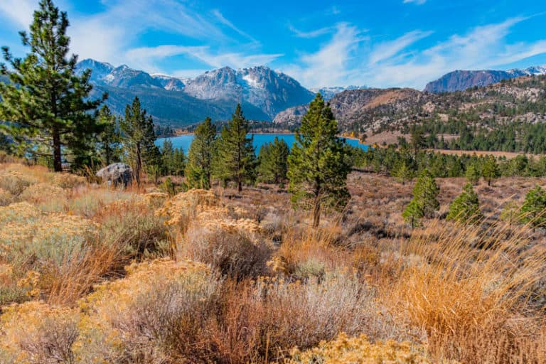 June Lake Loop is one of the most scenic drives in California!