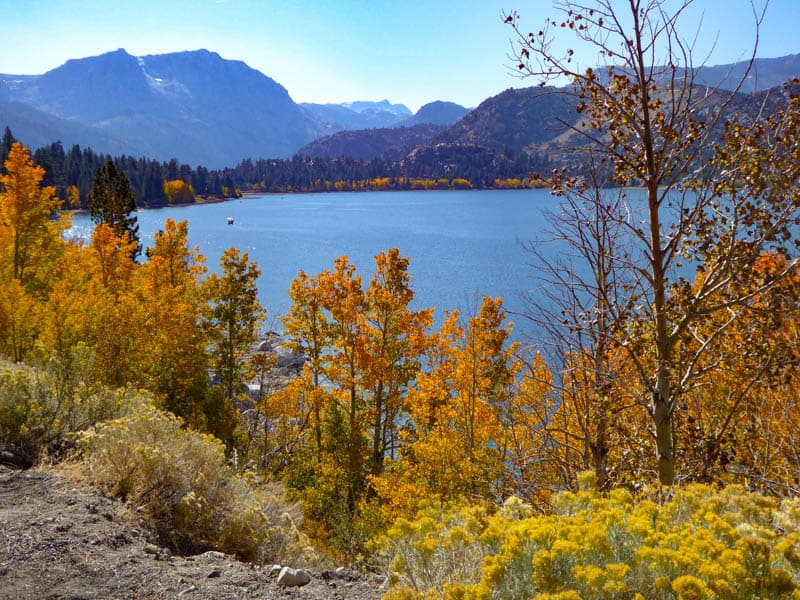 June Lake in California on a bright fall day