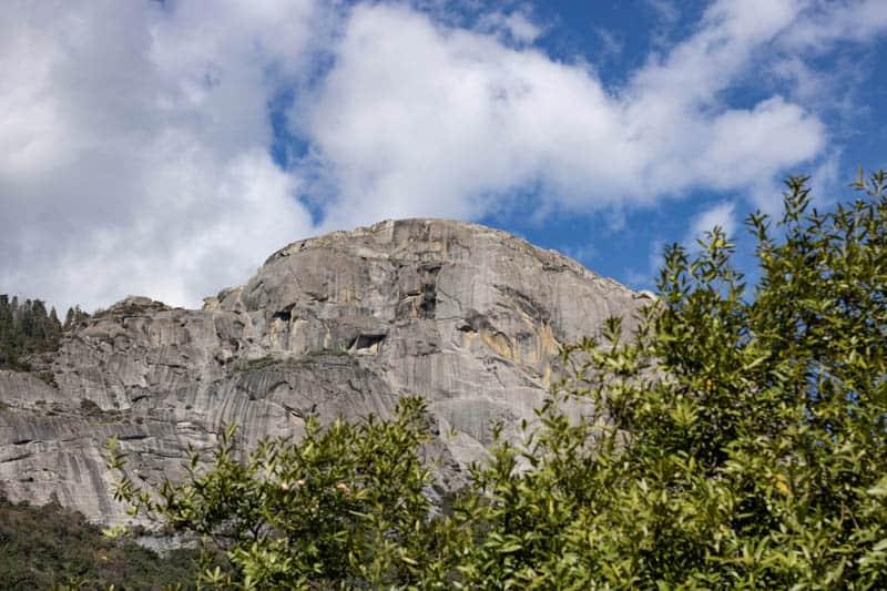Sequia National Park Landscape in California