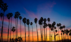30+ Splendid Things to Do in Santa Barbara, California