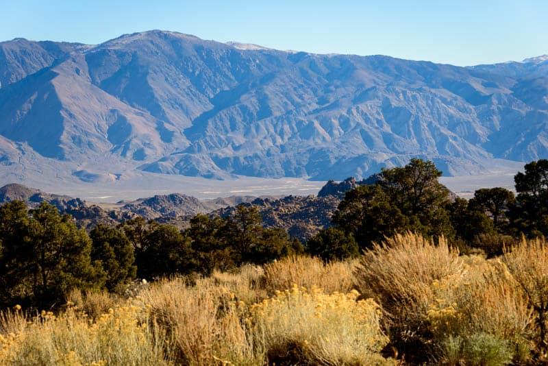 Landscape in Sequoia National Park California