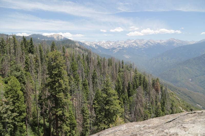Views at Sequoia National Park California