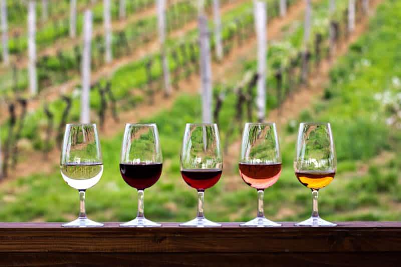 Wine Flight at Vineyard