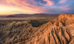 Anza-Borrego Desert State Park in Borrego Springs, CA: Things to Do (+ Tips for Visiting!)