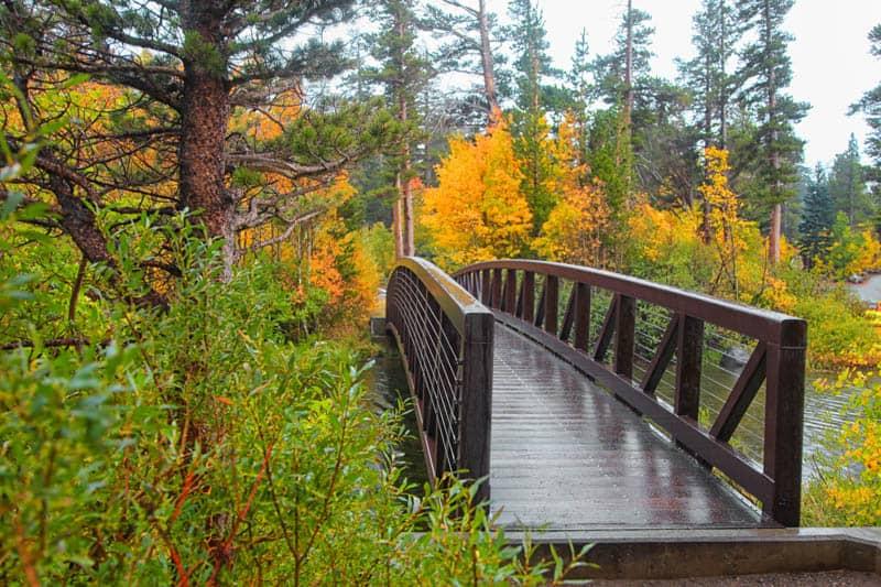A pedestrian bridge in Mammoth Lakes in the fall