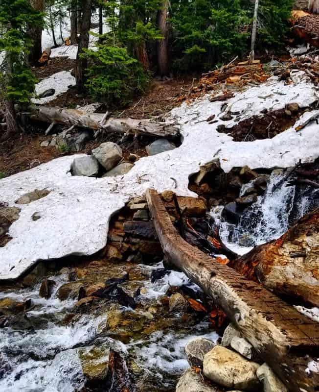 Log Bridge over Fern Creek on the way to Yost Lake, California