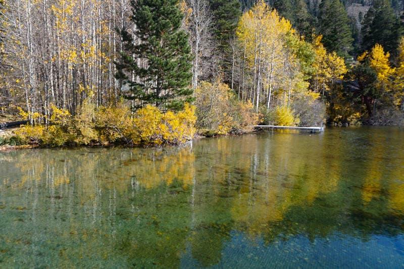 Gull Lake California in the Fall